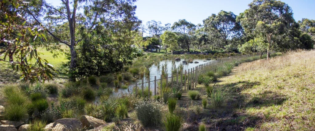 landscape architecture, water engineering, water sensistive urban design, wsud, spiire, melbourne
